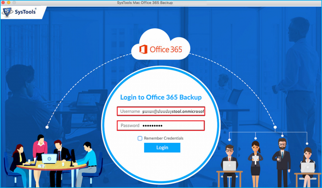 Office 365 User Details